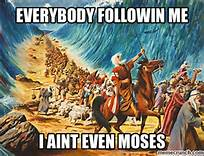 moses not